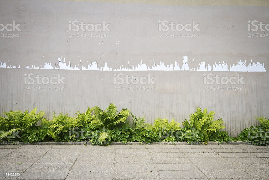 A street wall's paint chipping off stock photo