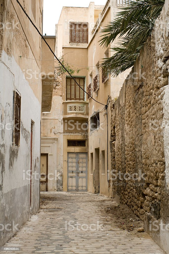 Street with wooden doors and bush in Mahdia. Tunisia. Africa. stock photo