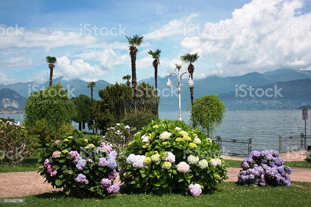 Stresa blomming waterfront at Lake Maggiore, Piedmont Italy stock photo