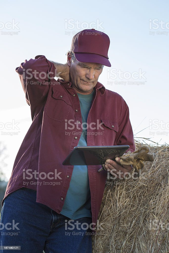 Stressed Farmer Using Tablet royalty-free stock photo