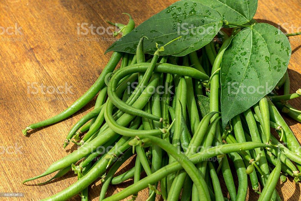 String Beans stock photo