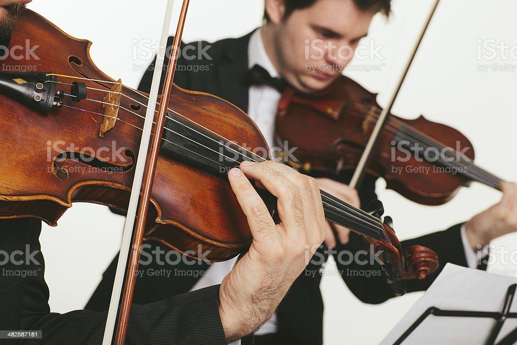 String instrument musicians. stock photo