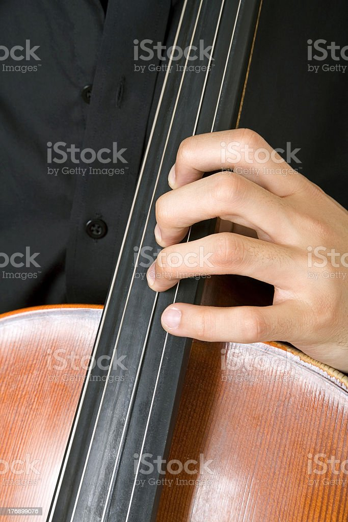 string instrument stock photo