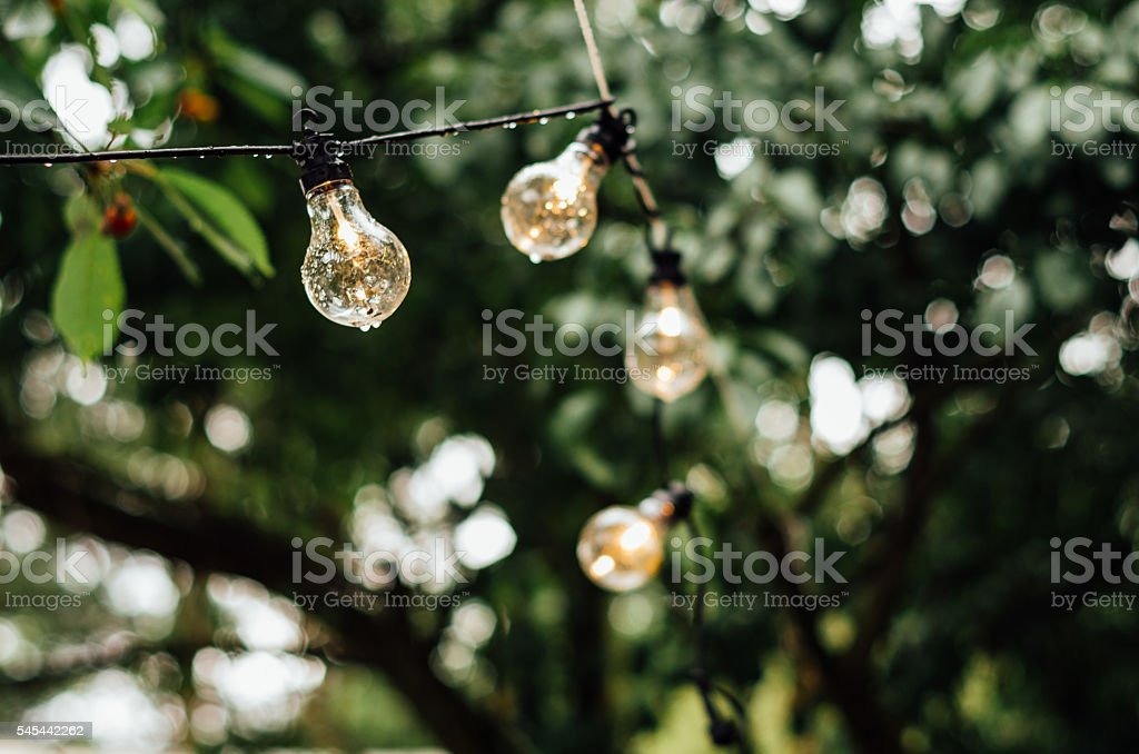 string of decorative light bulbs stock photo