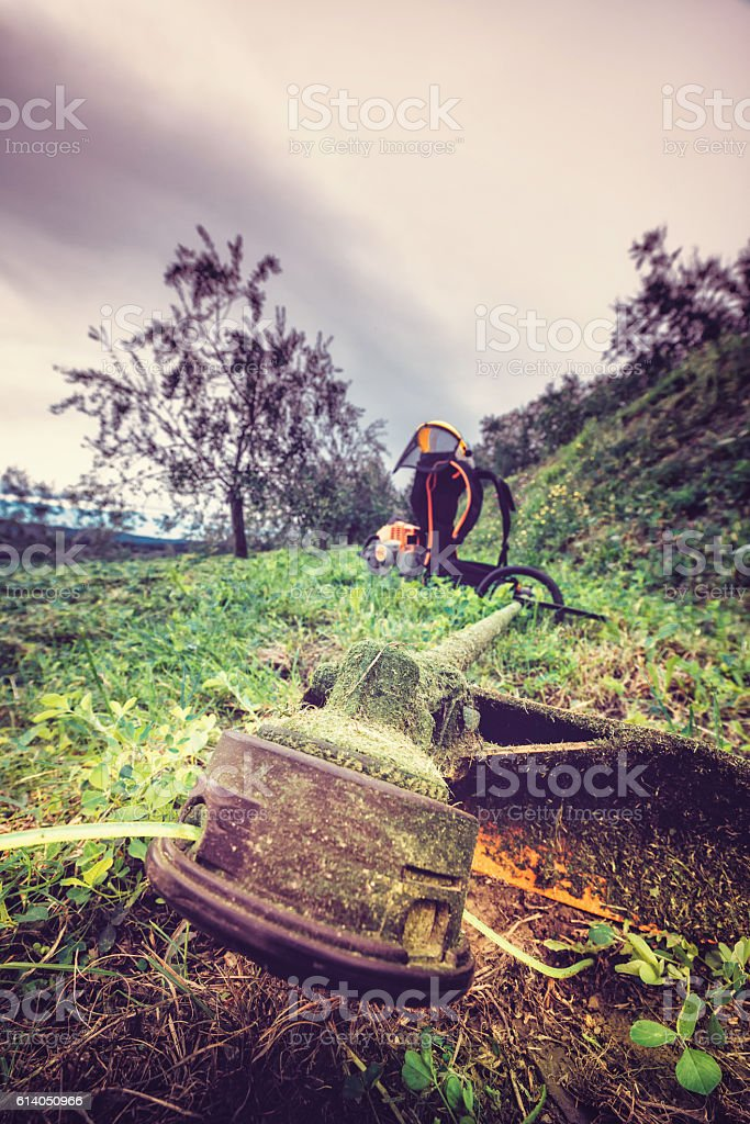 string trimmer stock photo