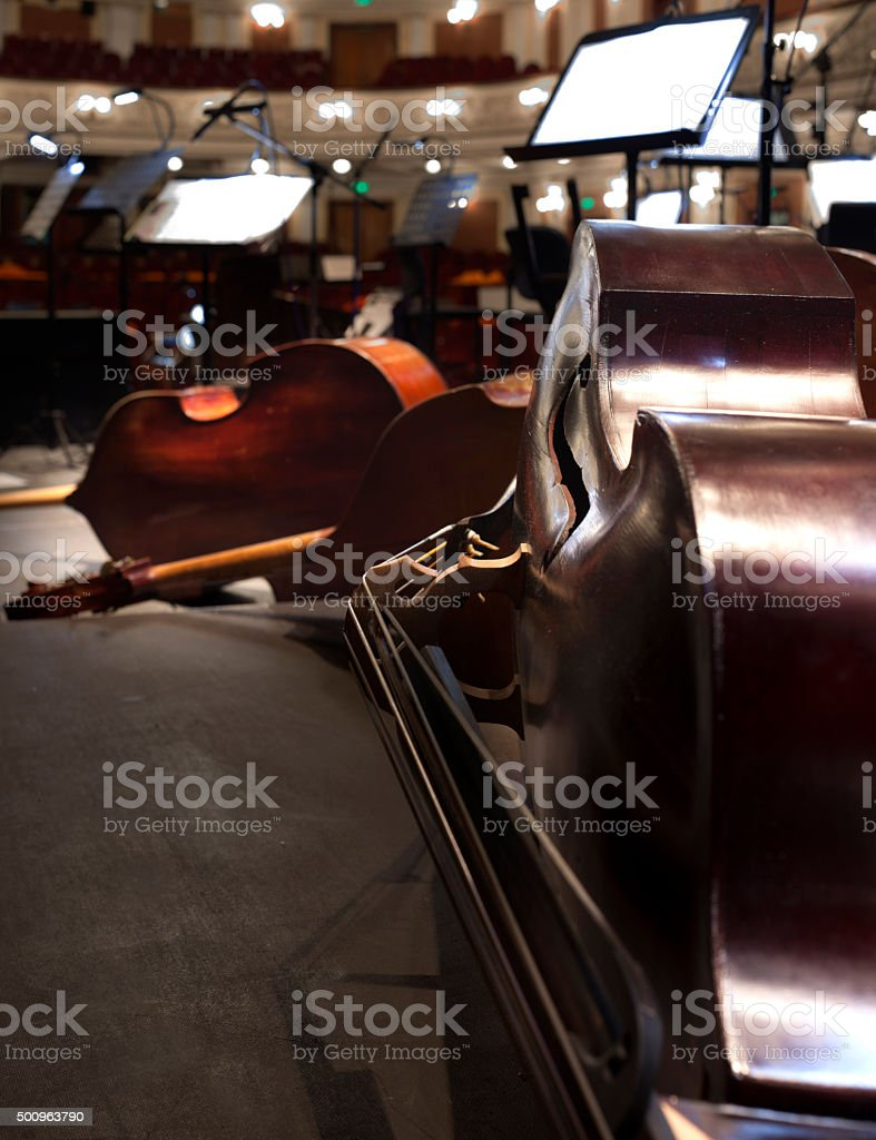 stringed musical instrument stock photo