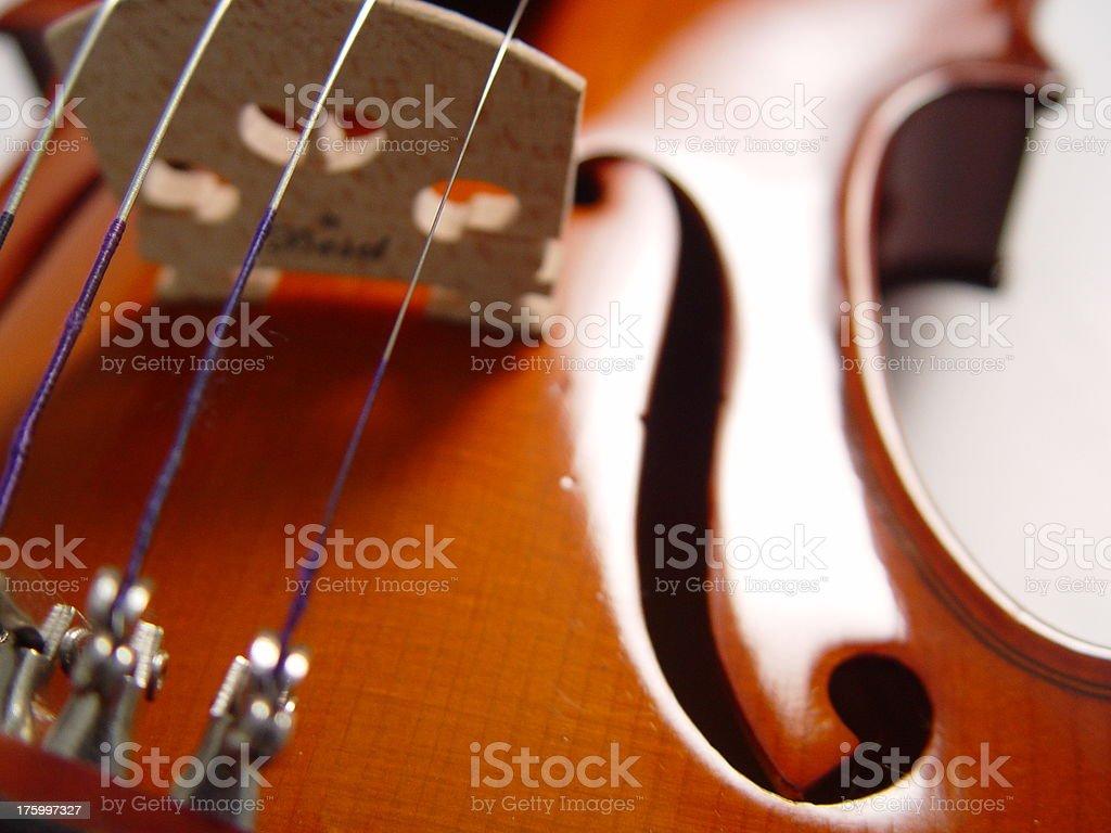 Strings & Body  Violin (series) royalty-free stock photo