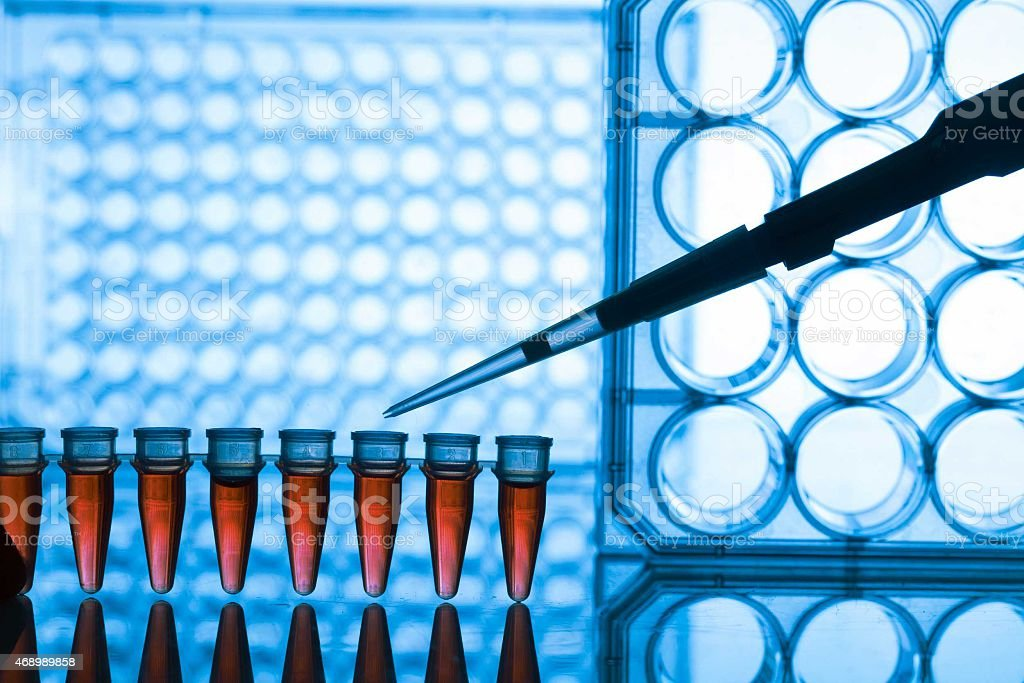 PCR strip test tubes and micropipette in genetics laboratory stock photo