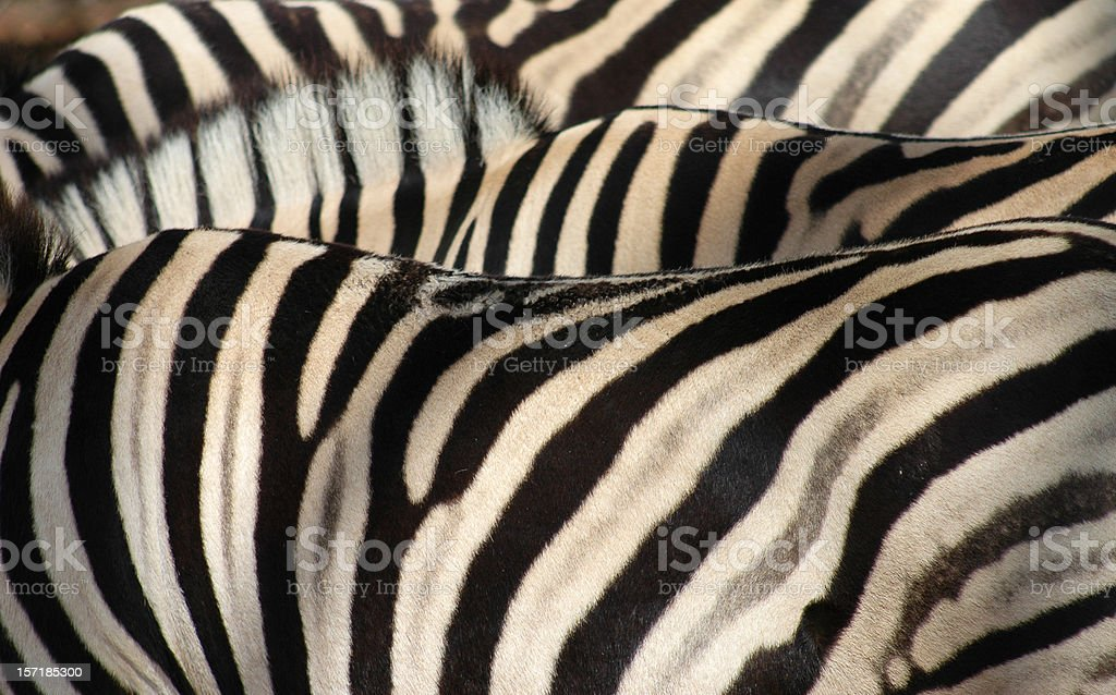 Striped Pajamas royalty-free stock photo