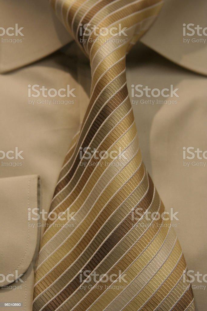 Striped Tie royalty-free stock photo