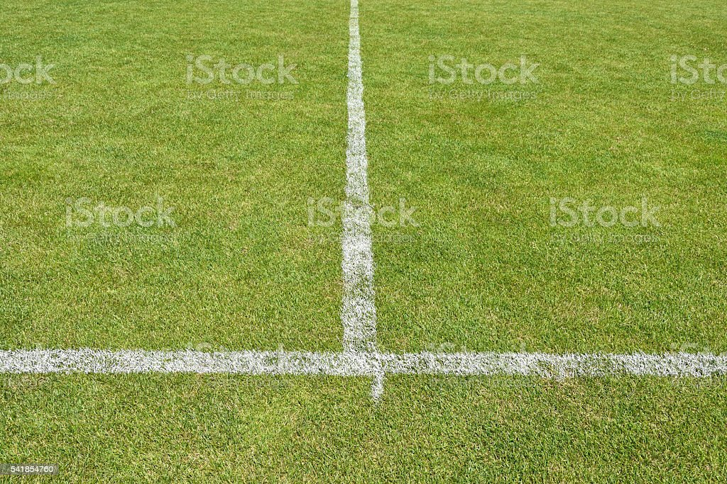 Stripes of the soccer field stock photo
