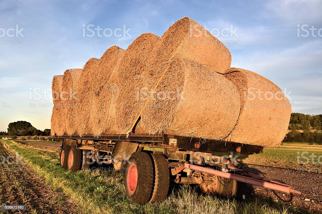 Strohrollen stock photo