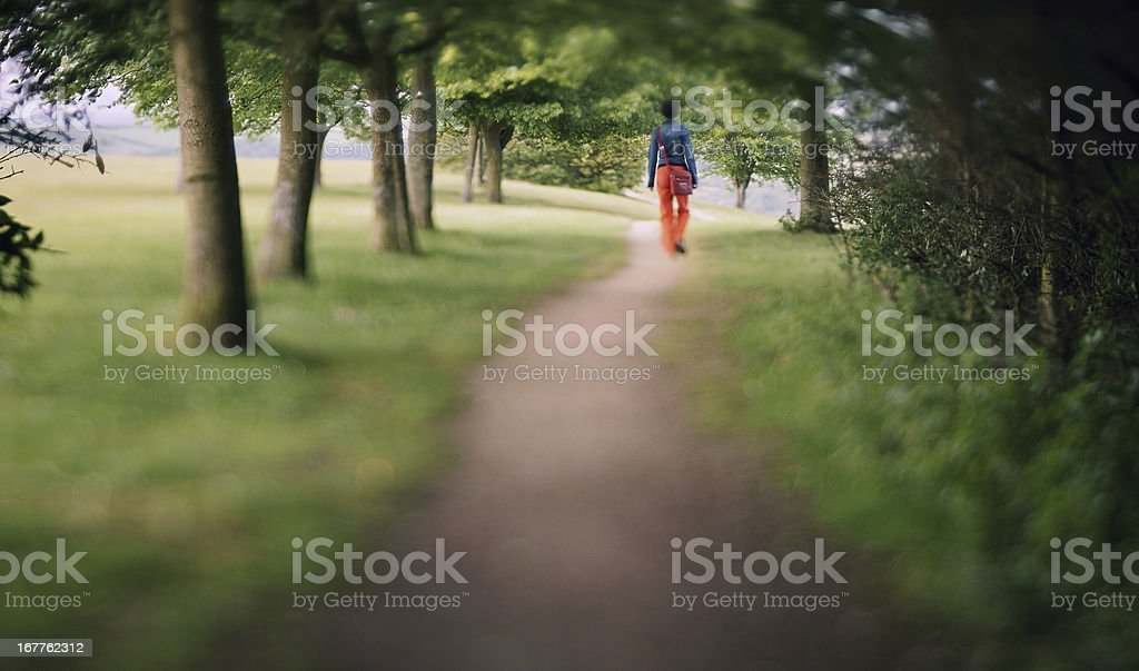 Stroll in the woods royalty-free stock photo