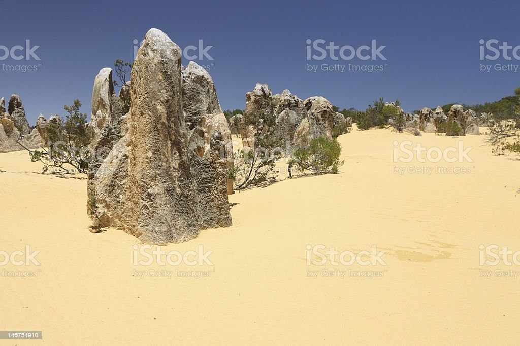Stromatolites 2 stock photo
