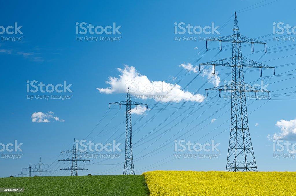 Stromleitungen ?ber Rapsfeld - Powerlines on rapeseed field stock photo