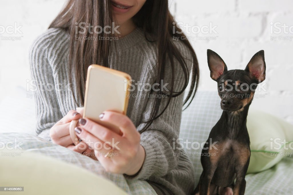 Strong friendship between human and dog stock photo