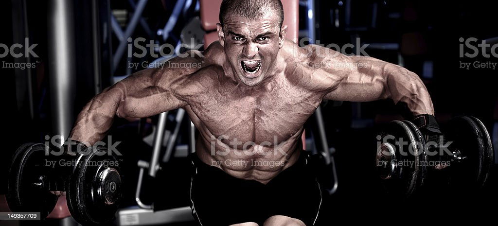 Strong & Furious royalty-free stock photo