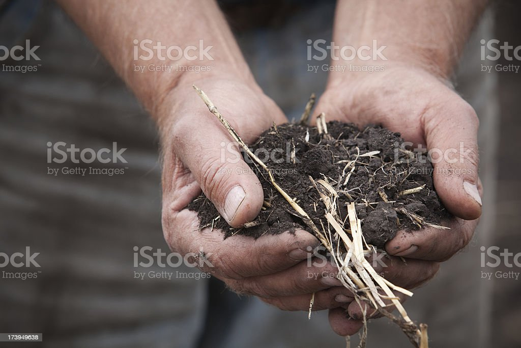 Strong Hands Holding Soil royalty-free stock photo