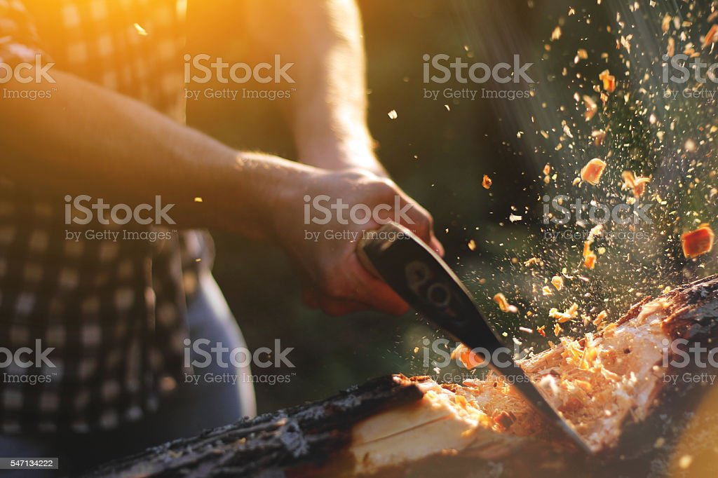 Strong lumberjack chopping wood, chips fly apart stock photo