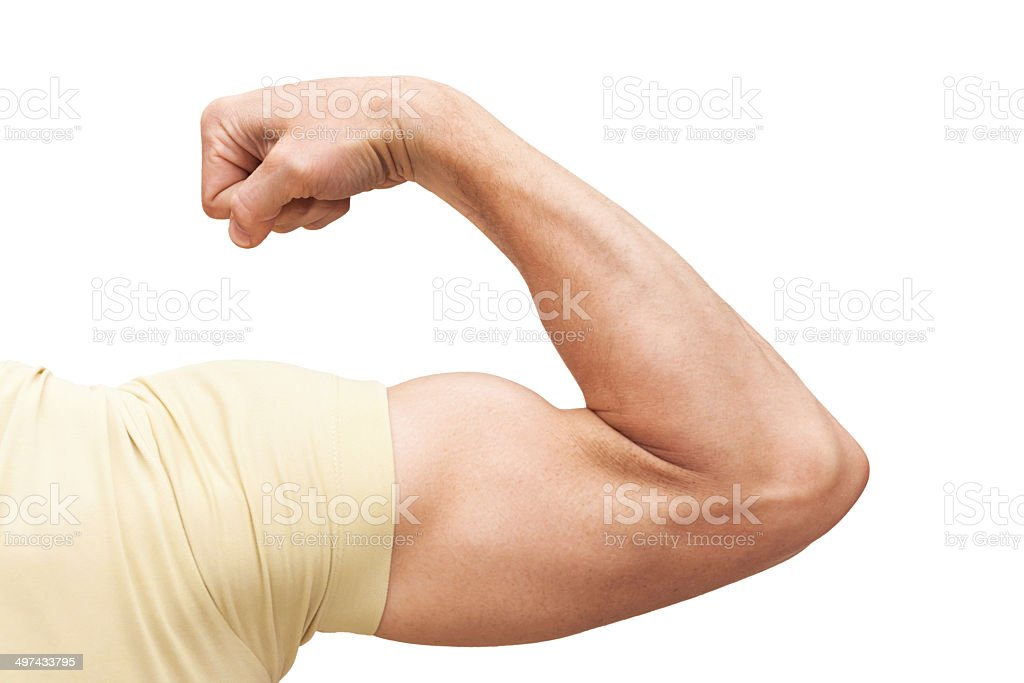 Strong male arm shows biceps. Closeup photo isolated on white stock photo