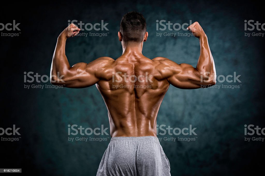 Strong Muscular Back stock photo