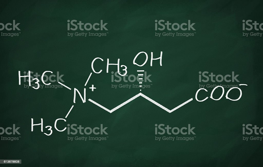 Structural model of Carnitine stock photo