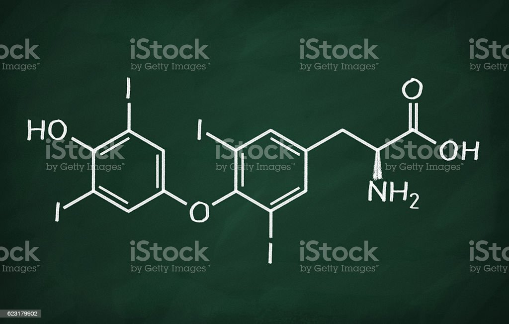 Structural model of Thyroxin stock photo