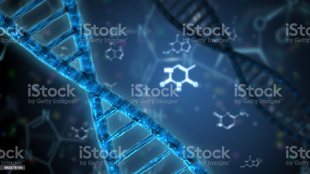 structure of the dna double helix stock photo