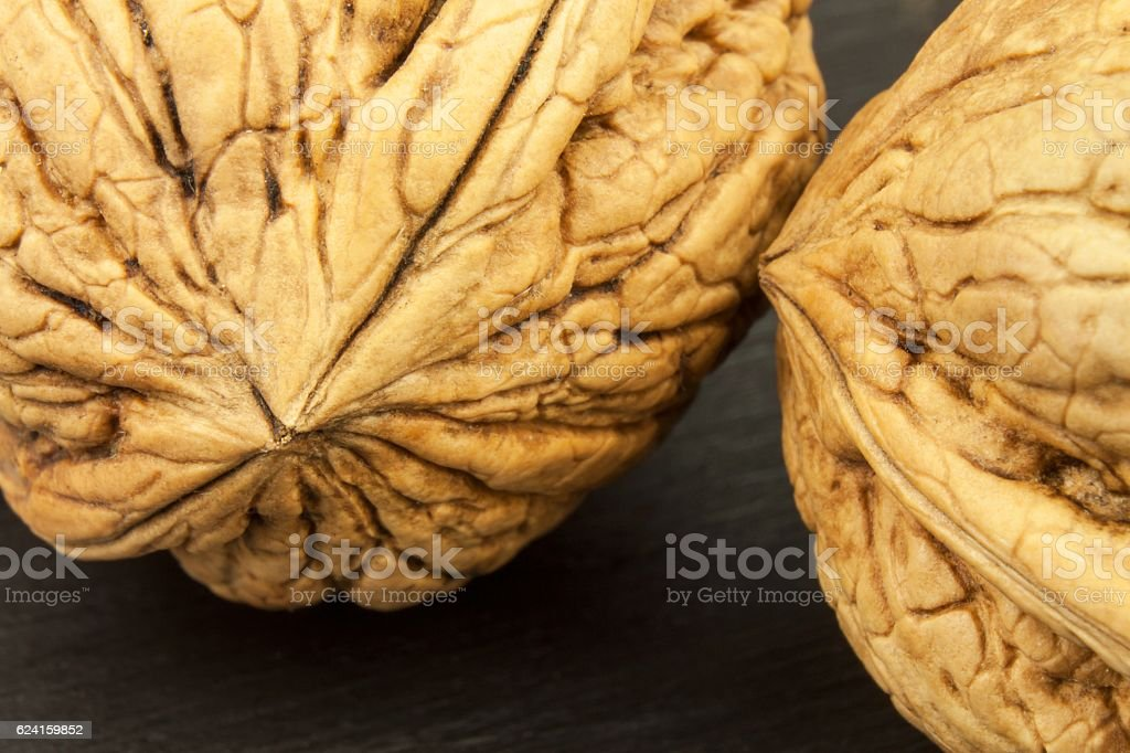 structure of the shell of a walnut. stock photo