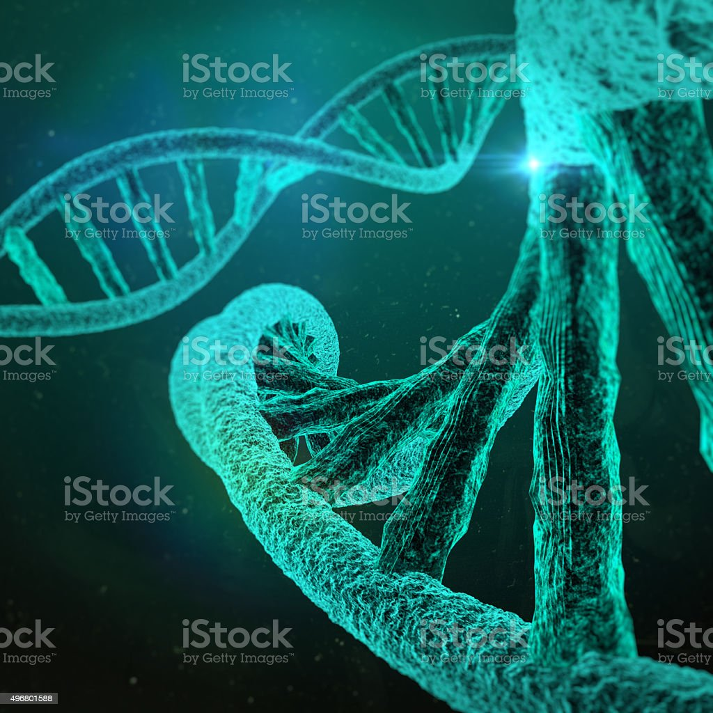 DNA structure stock photo