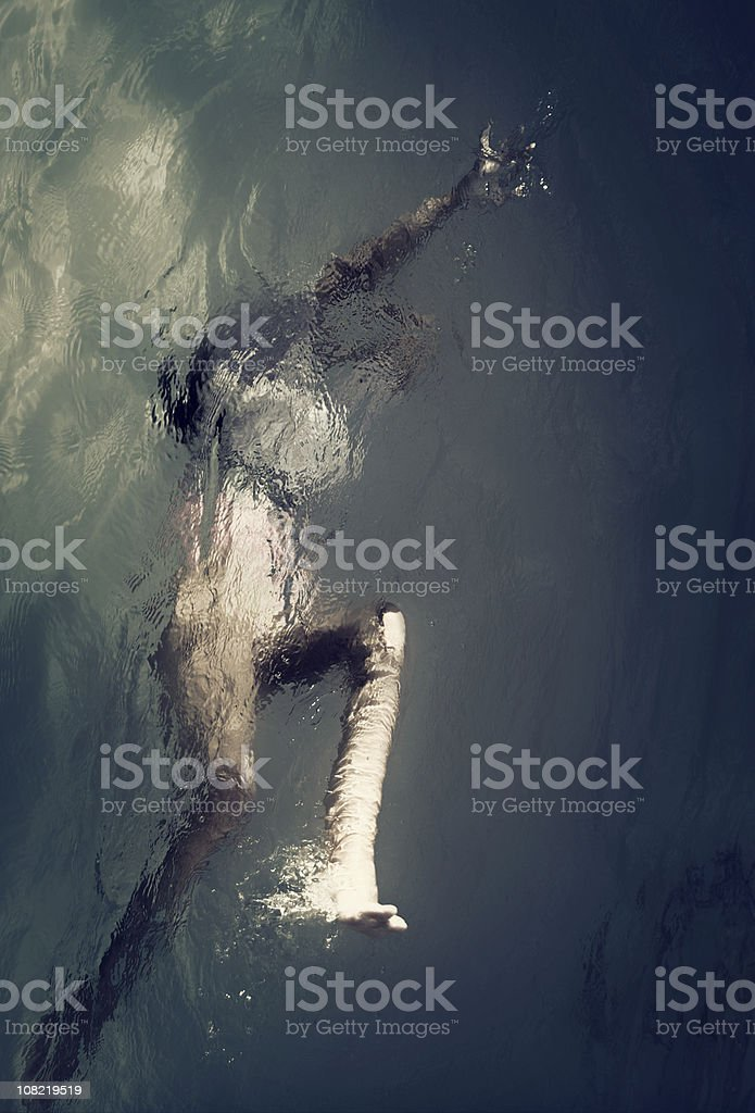 struggle for existence stock photo