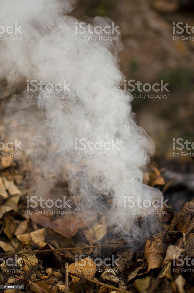 stubble burning stock photo