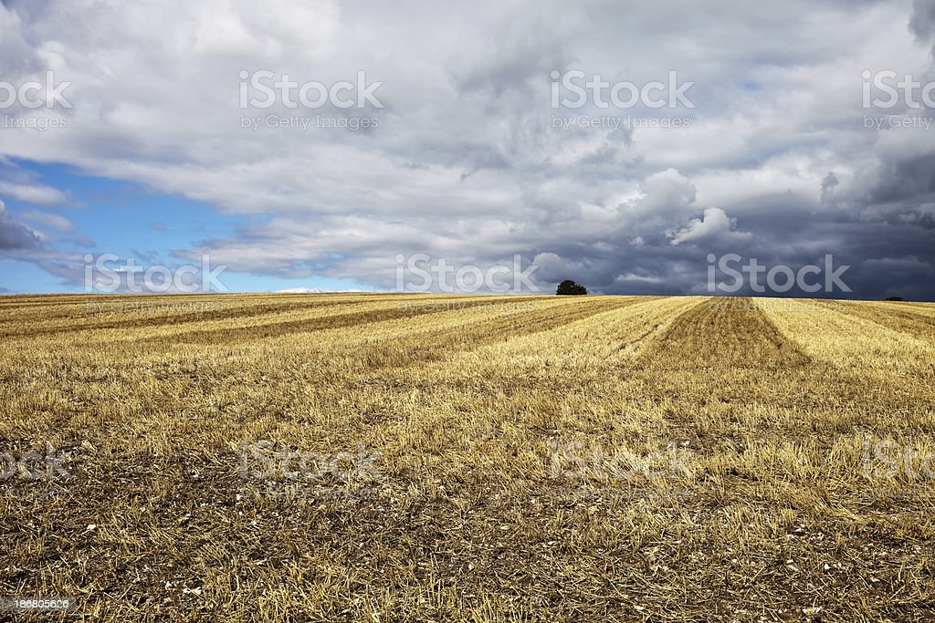 Stubble Field and Storm Clouds in England royalty-free stock photo