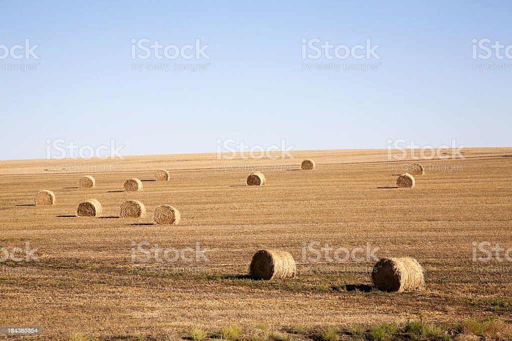 Stubble Field Hay Bales royalty-free stock photo