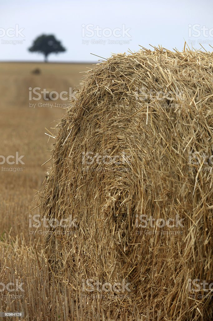 stubble field with hay bales royalty-free stock photo