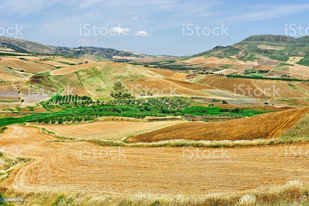 Stubble Fields stock photo
