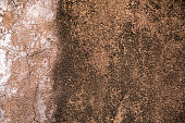 Stucco Grunge Background