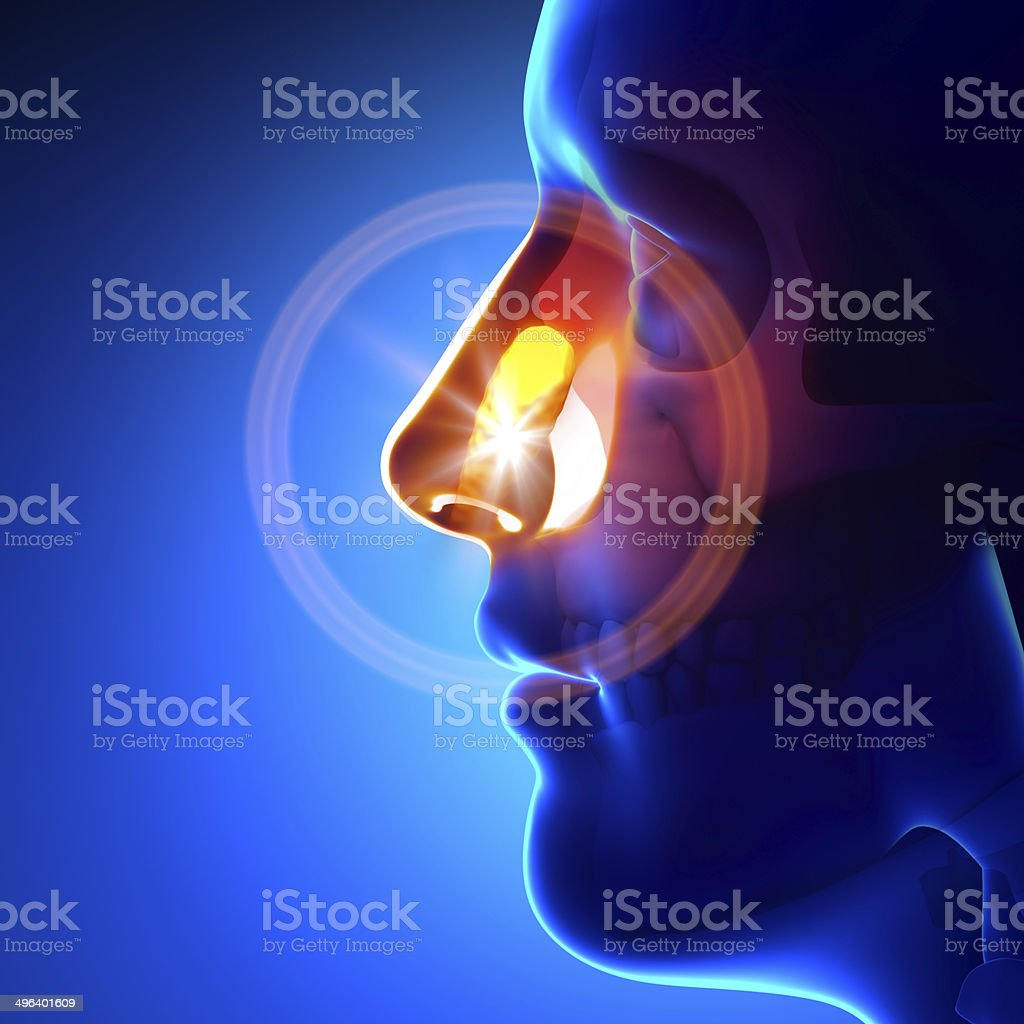 Stuck object in nose stock photo