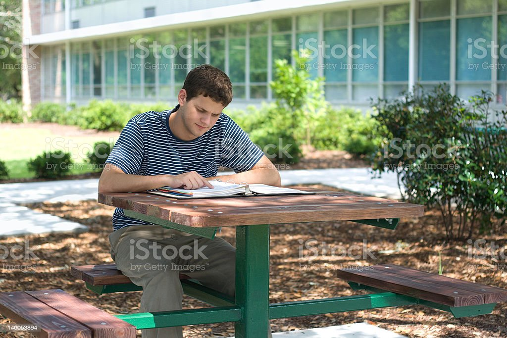 Student Concentrating royalty-free stock photo