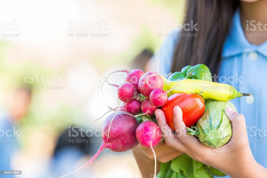 Student holding fresh vegetables during farm field trip stock photo