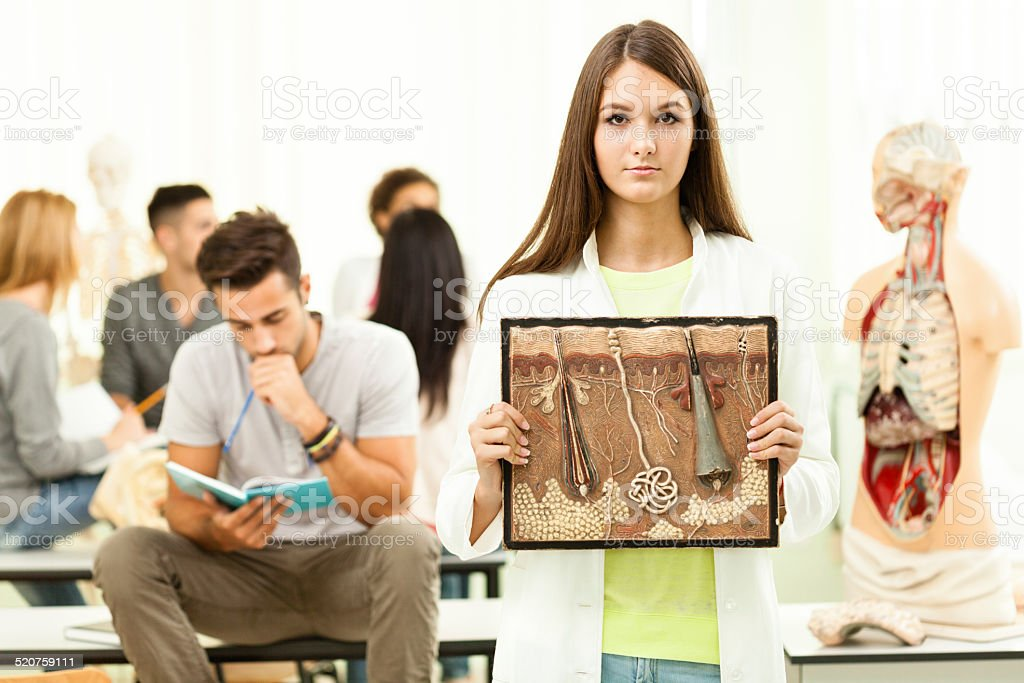 Student holds cross section of human skin stock photo