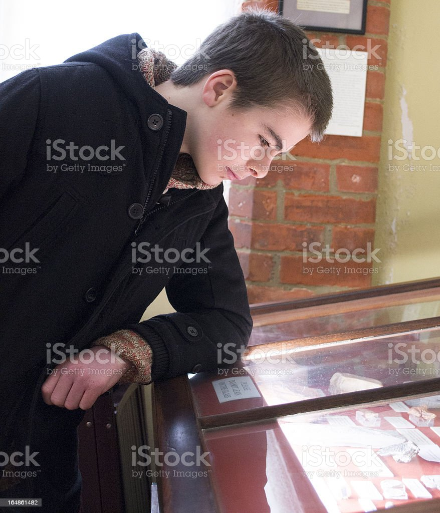 Student looking into a museum display cabinet royalty-free stock photo