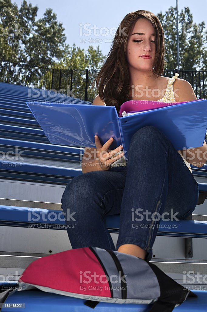 Student Studying At School royalty-free stock photo