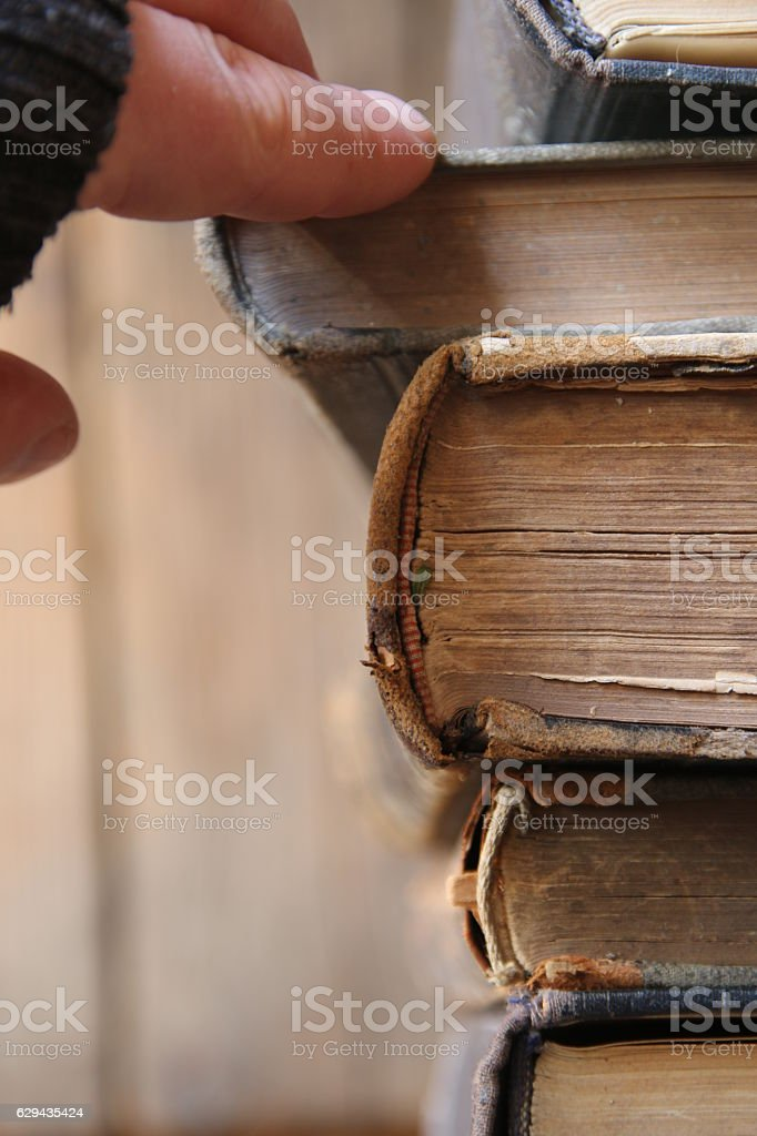student takes the book, soft focus, books to read idea stock photo