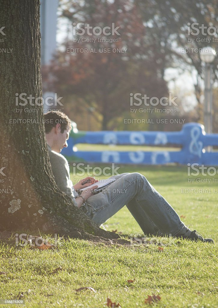 Student under a tree stock photo
