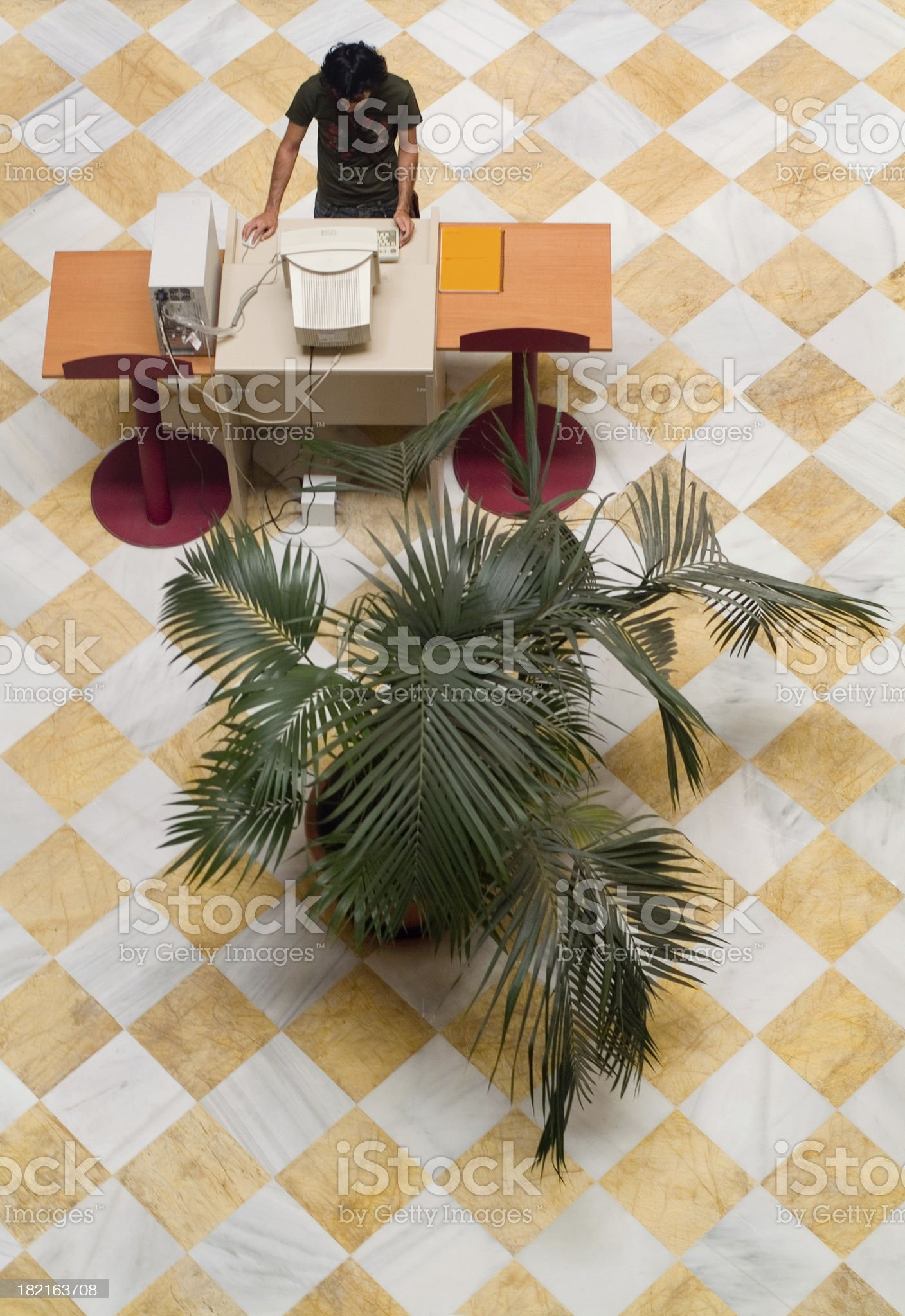 student working royalty-free stock photo