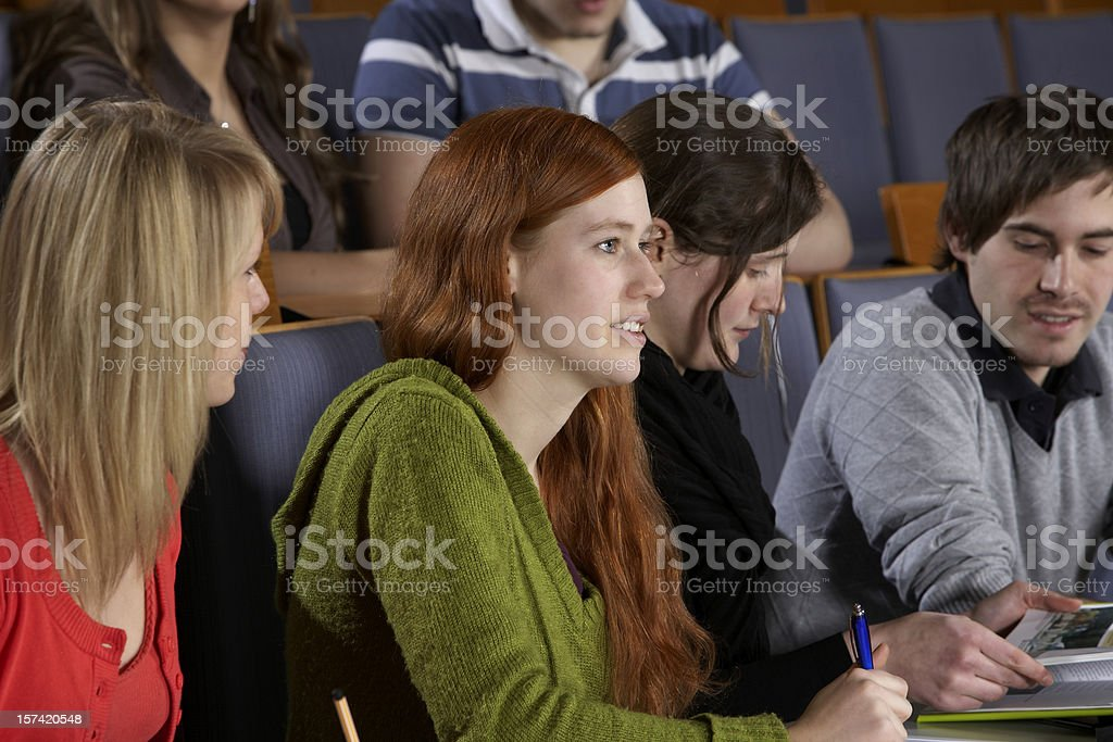 Students in lecture hall royalty-free stock photo