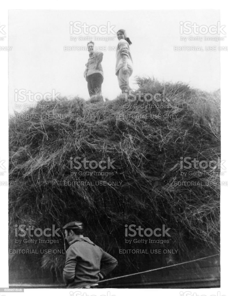 Students of institute on cleaning and loading of flax in collective farm (1988), Belarus stock photo