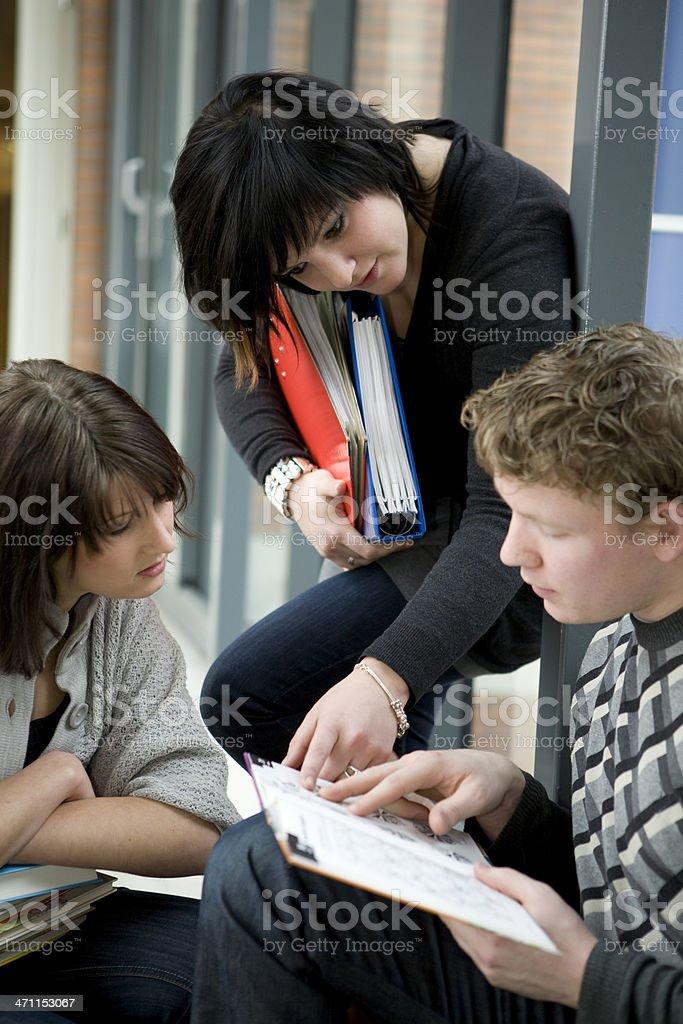 Students studying on university royalty-free stock photo