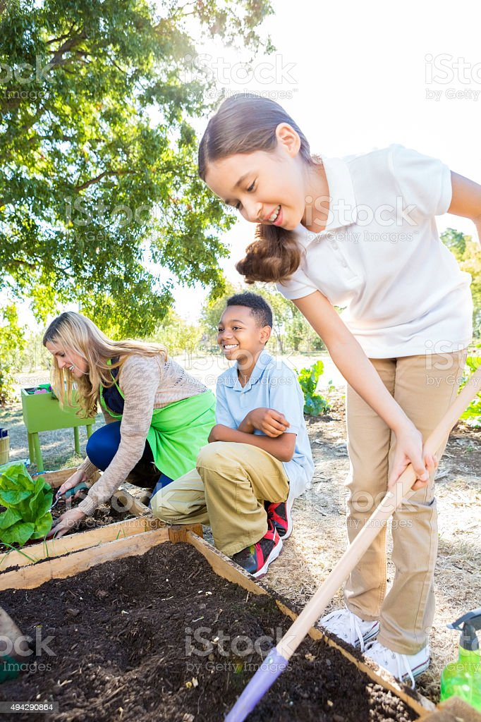 Students working in vegetable garden during field trip at farm stock photo